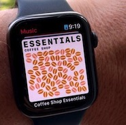 How to use the Music app on Apple Watch