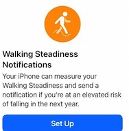 How to set up and use the Walking Steadiness Score feature and notifications in iOS 15